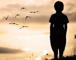Alone kid standing on field looking far away on birds flock