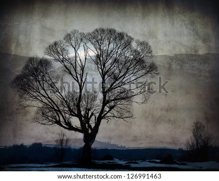 alone tree silhouette vintage textured background