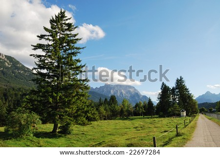 Alp pasture in the at the Karwendel mountains in Bavaria (Germany). #22697284