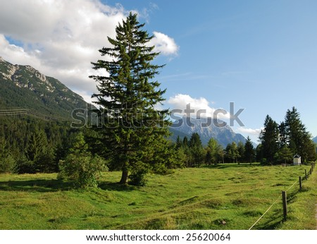 Alp pasture in the at the Karwendel mountains in Bavaria (Germany). #25620064