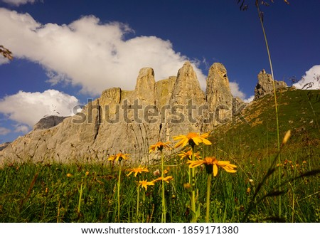 Alpes Dolomitas, Tirol del Sur, Italia, Europa. Foto stock ©