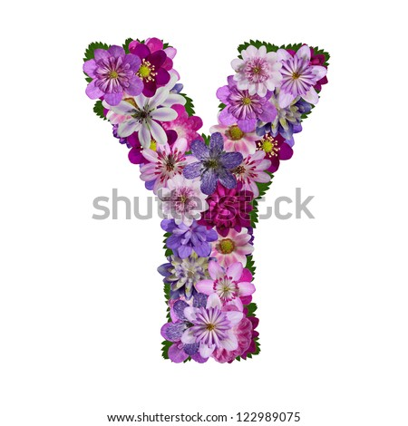 Y Alphabet Letter alphabet made of flower letter