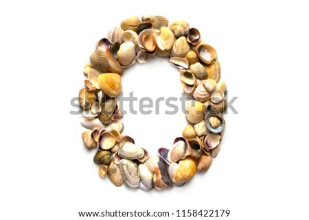 alphabet of seashells on a white background letter o designer font 1158422179