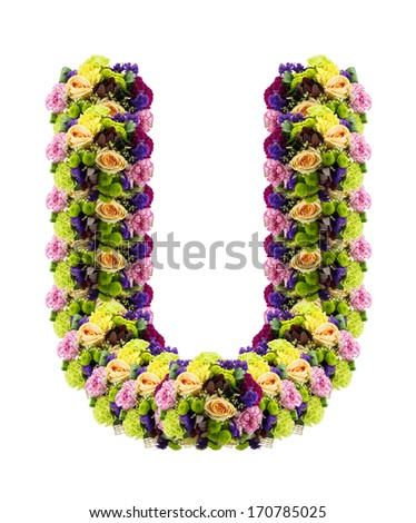 Free Photos Floral Abc Decorative Letter U Isolated On White