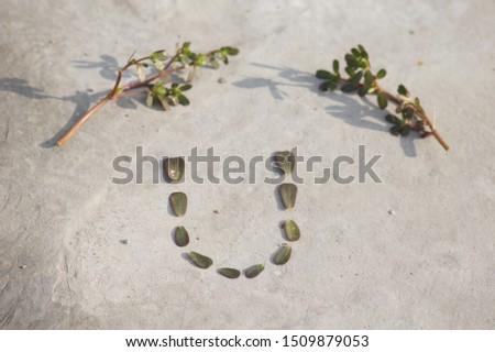 Alphabetical letter 'U' with leaf #1509879053
