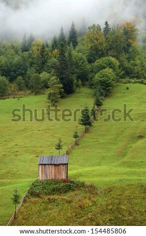 Alpine cottage an an alpine meadow