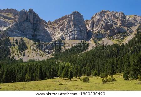 Alpine landscape in Serra del Cadí, Pyrenees mountains. Rock formations, a green meadow and a forest in Prat de Cadí, Cerdanya, Catalonia, Spain. Zdjęcia stock ©