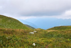 alpine meadows of the Caucasus mountains on a cloudy autumn day overlooking a misty valley