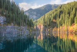 Alpine mountain landscape at Kaindy Lake in Kolsai Lakes National Park in Saty, Kazakhstan which features submerged birch tree trunks.