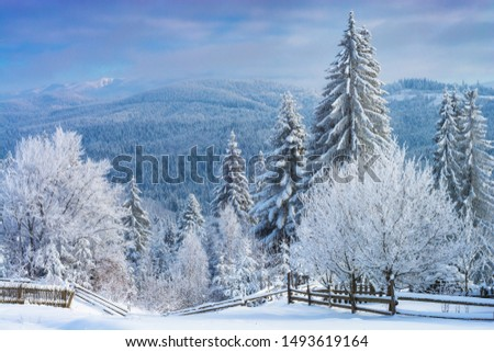 Alpine mountain valley covered with hoar frost and fresh snow. Majestic winter. #1493619164