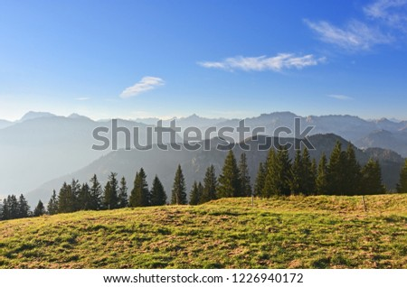 Alpine pasture with green grass and conifer trees in warm morning light under blue sky. Rocky mountain range in the background. Allgaeu Alps, Bavaria, Germany. #1226940172