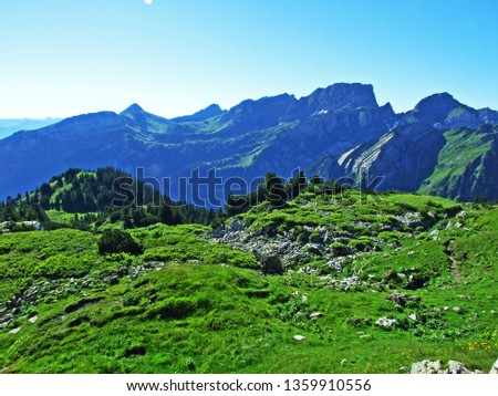 Alpine pastures and meadows on the slopes of the Alviergruppe mountain range - Canton of St. Gallen, Switzerland #1359910556
