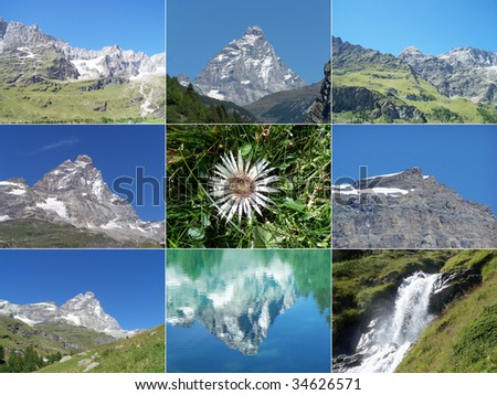 Alps mountains collage with Cervino Matterhorn mountain, waterfalls and Edelweiss flower