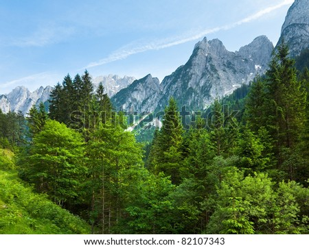 Alps mountains tranquil summer view (Austria, Gosau village outskirts)