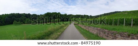 Alsace Wine Road, Panoramic