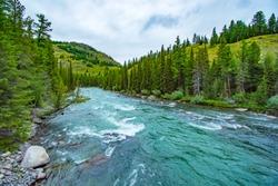 Altai mountains. River Argut. Beautiful highland landscape. Russia. Siberia/