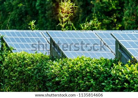 Alternative energy, sources and solar panels, sun energy.crystal.
