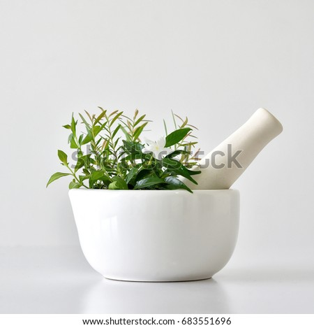 Alternative herbal medicine, Mortar with healing botanical herbs.
