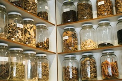 Alternative Medicine Herbal.