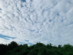 Altocumulus clouds are of water droplets and appear as gray puffy masses and full of streaks of beautiful usually appear between lower stratus clouds and higher cirrus clouds in Thailand.no focus