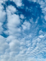Altocumulus clouds Formed in the troposphere at an altitude of 7,000–18,000 ft. are full of streaks of beautiful usually appear between lower stratus clouds and higher cirrus clouds. no focus