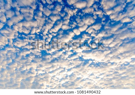 Altocumulus clouds. The sun shines through the Altocumulus clouds ,panorama