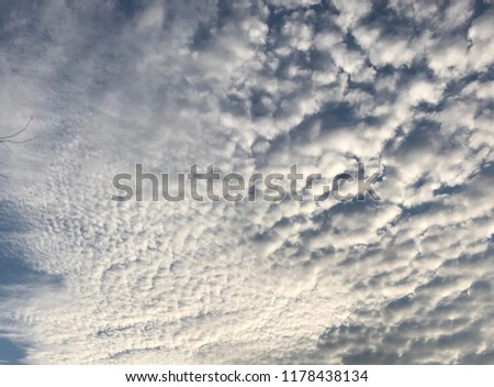 Altocumulus is a middle-altitude cloud genus that belongs mainly to the stratocumuliform physical category characterized by globular masses or rolls in layers or patches.