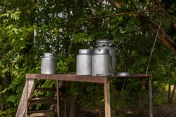 Aluminum milk cans on the podesta. Summer countryside. Livestock