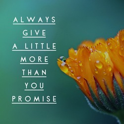 Always give a little more than you promise, best motivational and inspiring quote for improving society, orange flower in the background