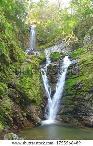 Amagi Falls is a waterfall located in Kamiyama Town, Meisai District, Tokushima Prefecture. It has been selected as one of Japan's 100 best waterfalls, 88 places in Shikoku, 88 views of Tokushima.