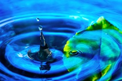 Amazing abstract shot of water droplet splash near the green leaf in water. Macro shot with selective focus.