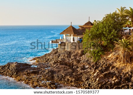 Amazing aerial view on palm trees and beautiful house on the rocks near the ocean at summer sunset. Seaside resort.