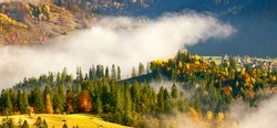 amazing autumn colorful scenery, magnificent morning fog in sunlight on the hills of mountans, majestic view on Carpathian slopes in haze, breathtaking nature image, Ukraine, Europe