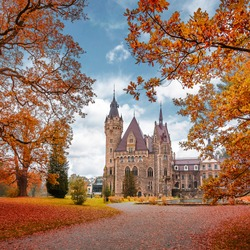 Amazing Autumn Scene with Colorful Leafes on trees and Moszna Castle on background. View on majestic Moszna Castle is a famouse palace in Moszna village, Upper Silesia, Poland.