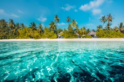 Amazing beach background for summer travel and vacation concept design. Beautiful blue sea and relaxing beach scene and tranquil palm trees