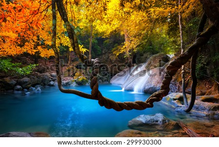 Amazing beauty of Asian nature. Tropical waterfall flows through dense jungle forest and falls into wild pond