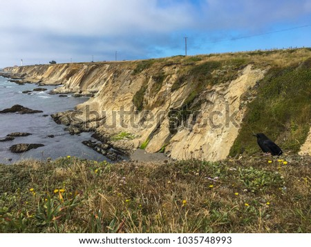 Stock Photo Amazing coastline with Point Arena Lighthouse and Raven, CA, USA