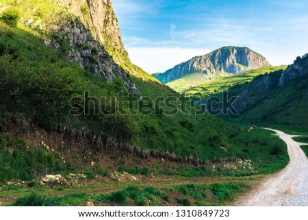 amazing countryside in romania mountains. huge cliffs above grassy meadows. cattle of cows grazing in  the distance. road in to the gorge. beautiful landscape in springtime at sunrise #1310849723