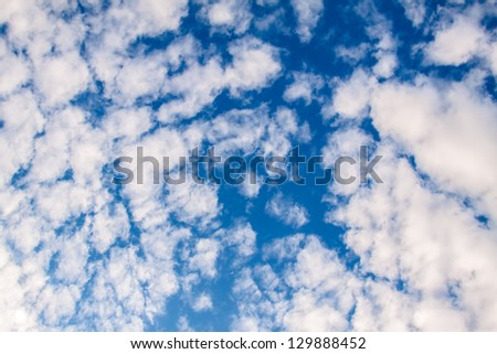Amazing cumulus cloud formation in deep blue sky