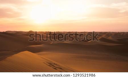Amazing desert sunset. Beautiful arabian desert with warm colors. Colorful contours of sand dunes at Abu Dhabi.  #1293521986