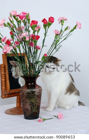 Amazing lady-cat sitting on the table near to vase with flowers and the old mirror