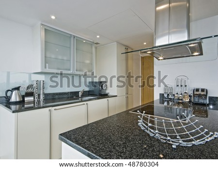 amazing luxury kitchen with modern electric appliances