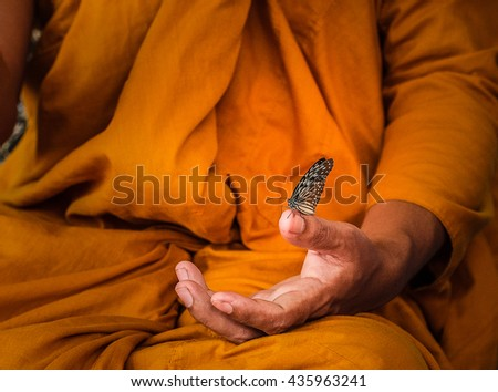 Amazing Monk Relaxing Hand with Butterfly  #435963241