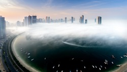 Amazing morning when you see the fog invading the city.
