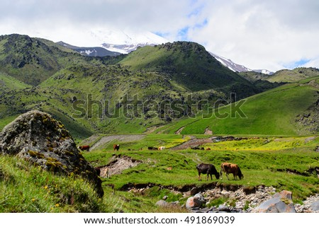 stock photo amazing mountain range landscape with fields cows green grass and clouds 491869039 - Каталог — Фотообои «Природа, пейзаж»