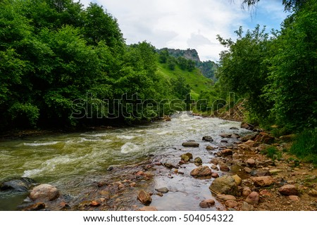 Amazing natural view of fast mountain river surrounded by green forest with sky as a background. Nature river landscape perspective.
