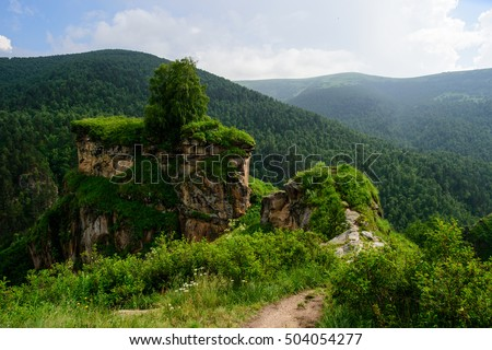 stock photo amazing natural view of green mountain forest and lonely tree growing on a rock with sky as a 504054277 - Каталог — Фотообои «Природа, пейзаж»