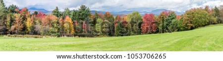 Amazing  panoramic view of fall foliage colourful forest #1053706265