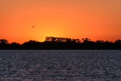Amazing red and orange sunset over a lake with the sun, a bird in the sky, the contours of trees and ripples on the water