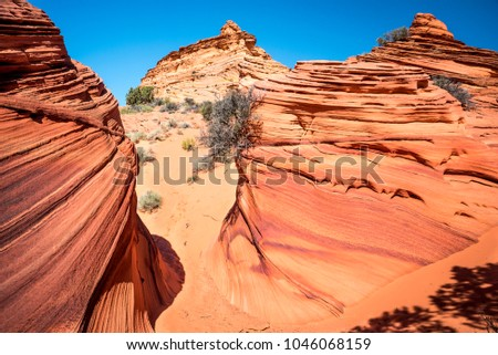 Amazing red rock stripe formation in South Coyote Buttes, Arizona, The Wave. Curved red sandstone rocks. Parya Canyon Vermillion Cliffs, Coyote Buttes Wilderness. National Park, USA.
